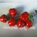 Miniatur buah strawberry